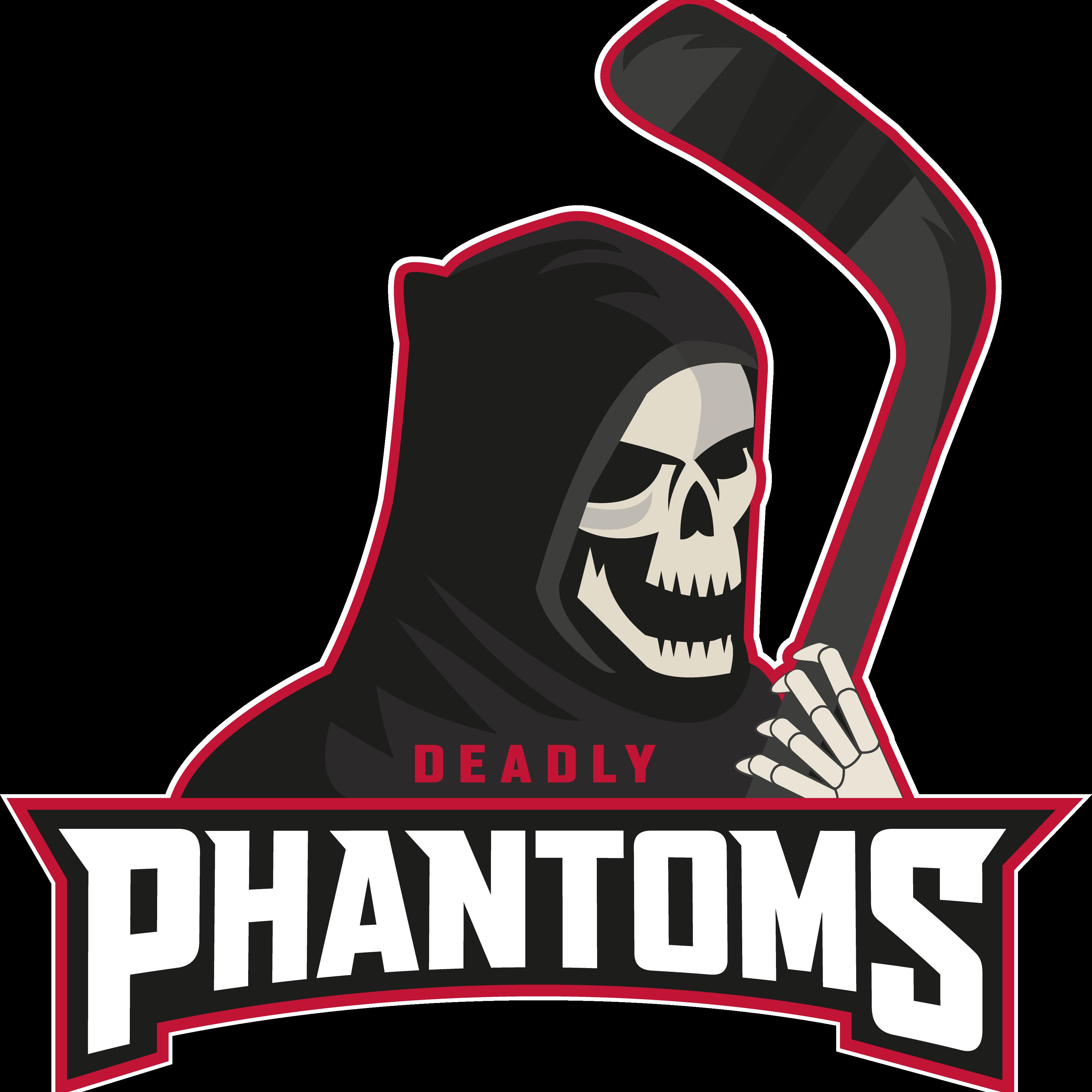 BRAYCE Phantoms